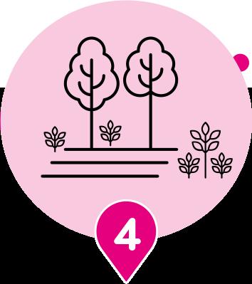 Parcours essentiel 4